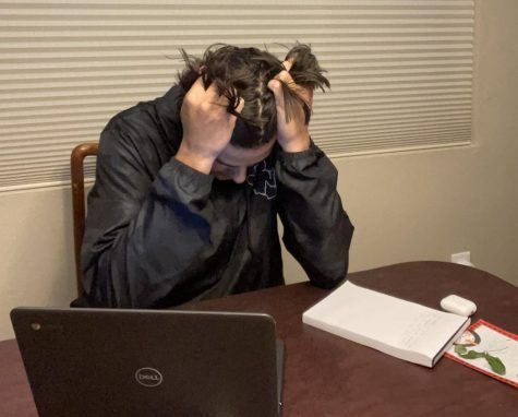 A young student is stressed with the amount of work they have to complete.